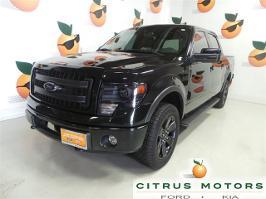 Ford F 150 2013 1ftfw1etxdkg31804 81938 91092116